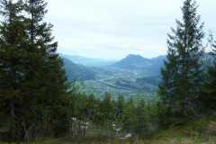 Heidipfad 08.06.19 P1050953