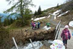 Heidipfad 08.06.19 P1050966